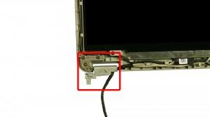 Remove the left hinge screws.